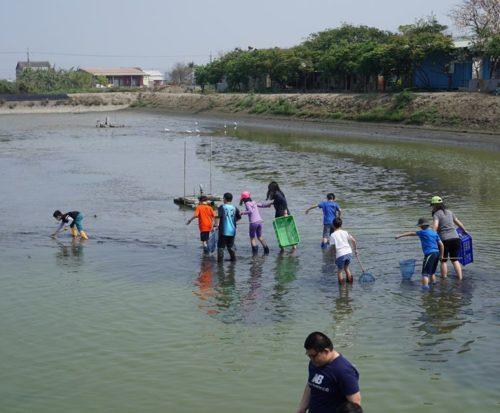 魚塭2-500x413